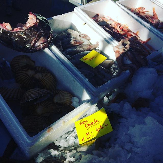 The fish meant business at today's market. #DutchScoop #ShoppingTheDutchMarket