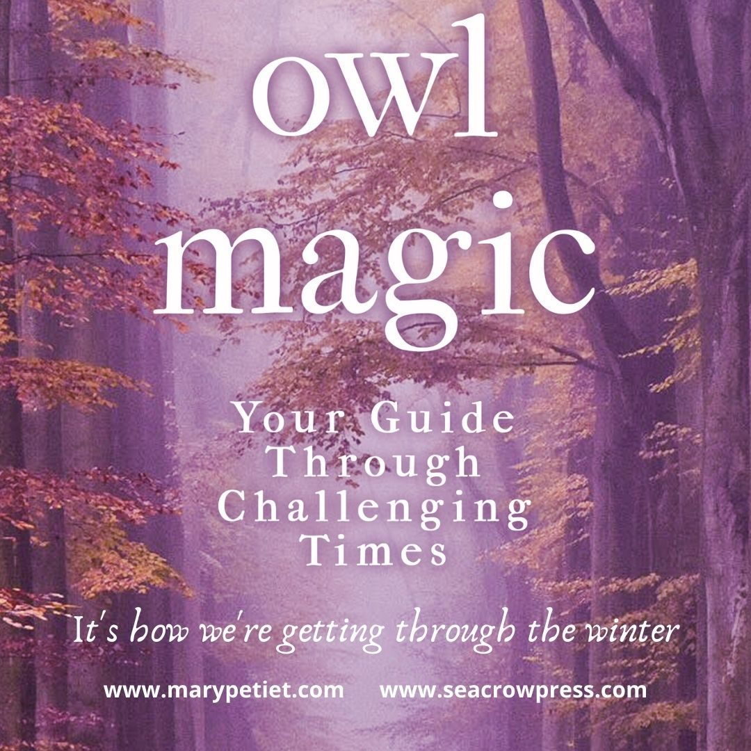 Owl Magic